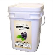 Bucket of Freeze Dried blueberries