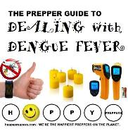 Dealing with Dengue Fever
