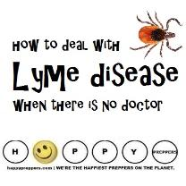 How to deal with Lyme Disease when there is no doctor
