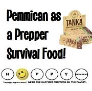 Pemmican as a prepper survival food