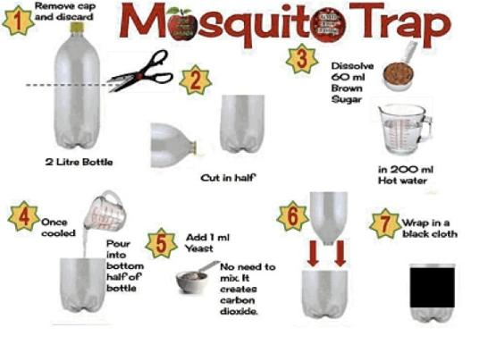 Mosquito Trap circulating on pinterest