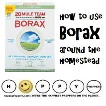 How to use Borax around the homestead