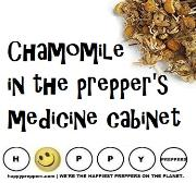 Chamomile tea and essential oils for preppers