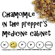 Chamomile in the prepper's medicine cabinet