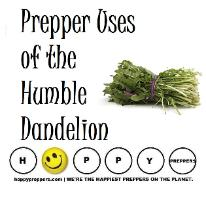 Prepper Uses of the Humble Dandelion