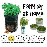 Farming at home
