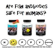 Fish antibiotircs