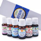 Healing Solutions Best Friends Blends