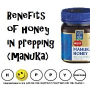 Benefits of honey in prepping