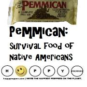 Pemmican survival food of Native Americans