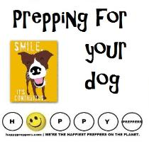 Prepping for your dog - How to prepare your dog for survival