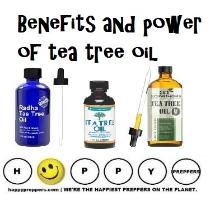 Benefits and power of Tea Tree Oil