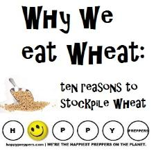 Why we eat wheat: ten reasons to stockpile wheat